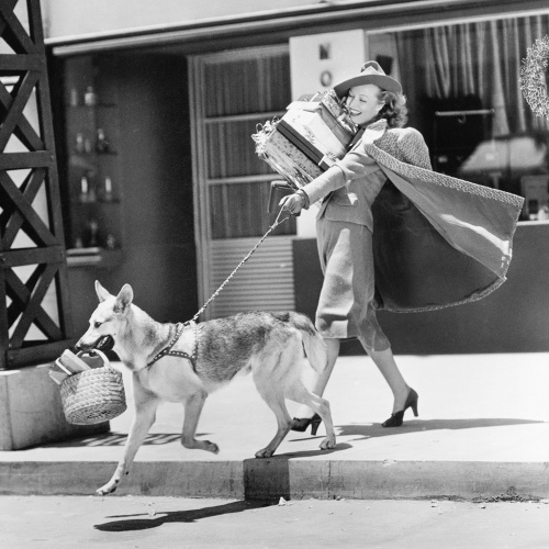 Young woman going shopping with her German shepherd and carrying presents
